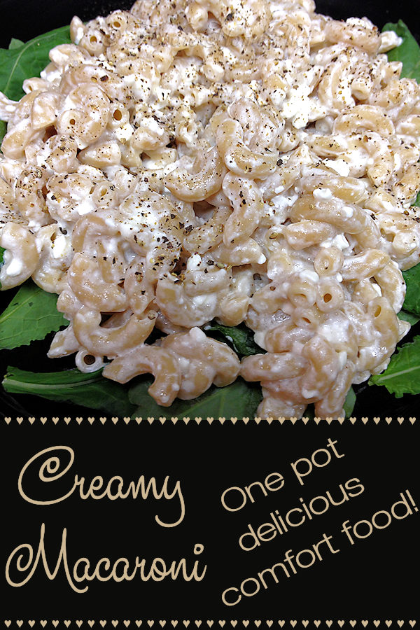 Creamy Macaroni - I'll bet you've never tasted macaroni like this... it's super creamy & really delicious! You can use any kind of pasta you want like linguine, bow ties or whatever you desire. It's great for lunch or a light dinner, a real comfort food. --------- #MacaroniRecipes #Macaroni #Pasta #PastaRecipes #ItalianFood #ItalianRecipes #Food #Cooking #Recipes #Recipe #ComfortFood #FoodieHomeChef
